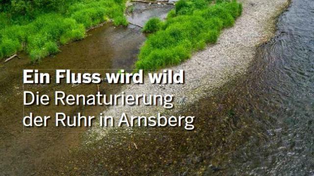 Ein Fluss wird wild