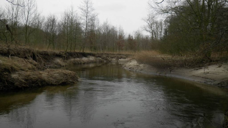 Die Berkel – ein sandgeprägter Fluss