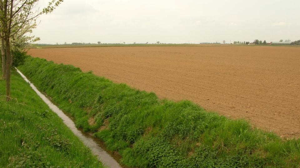 Der Finkelbach mit intensiv landwirtschaftlich genutztem Umland