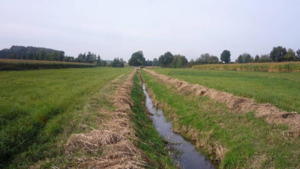 Der Forthbach – umgeben von intensiv landwirtschaftlich genutzten Flächen