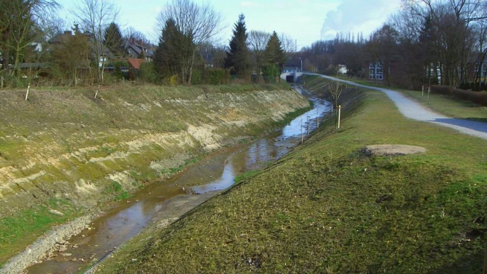 Der Kirchschemmsbach in Bottrop kurz nach der Renaturierung