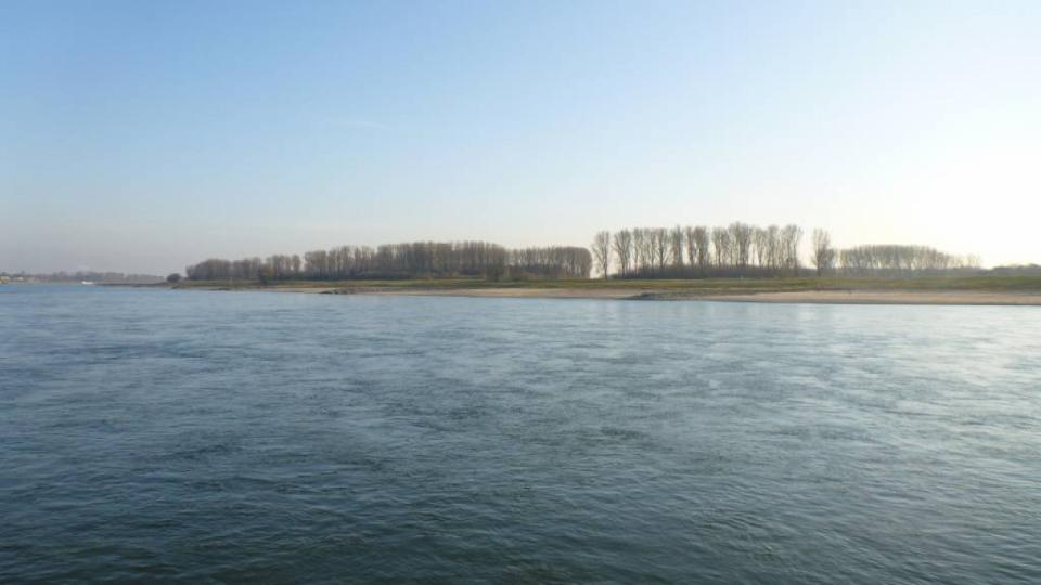 Der Rhein bei Monheim