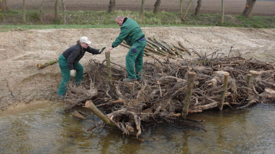 Der Einbau von Strömungslenkern im Uferbereich des Bolldammbaches