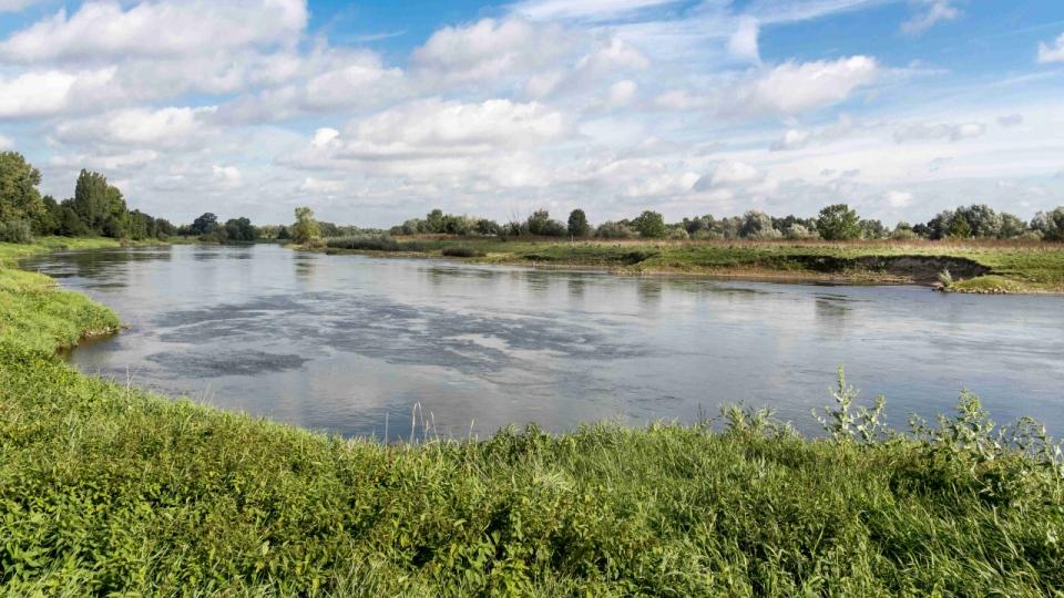 Die Weser oberhalb von Petershagen