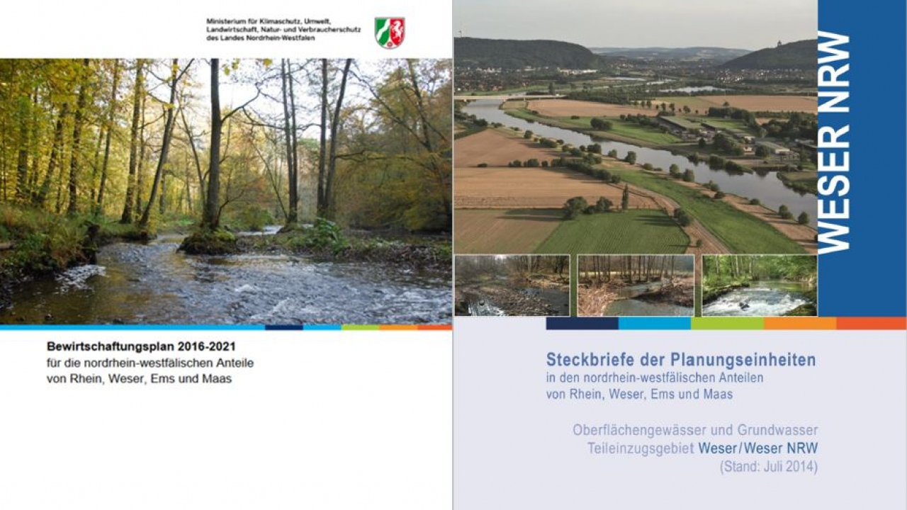 Deckblatt BWP/PE Weser