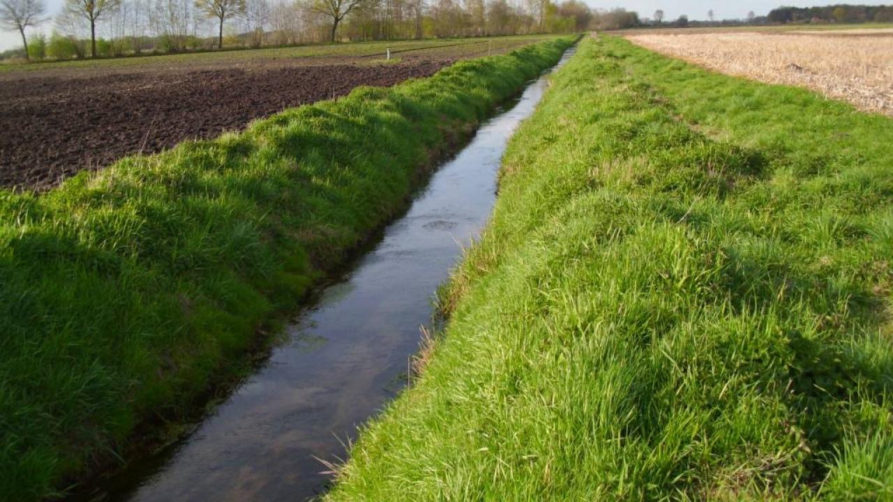 Landwirtschaftliche Nutzung entlang des Heubachs