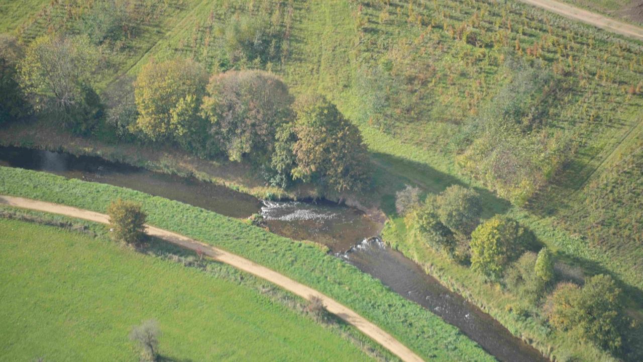Entnahme von Uferbefestigungen und Zulassen einer eigendynamischen Entwicklung der Erft bei Weilerswist