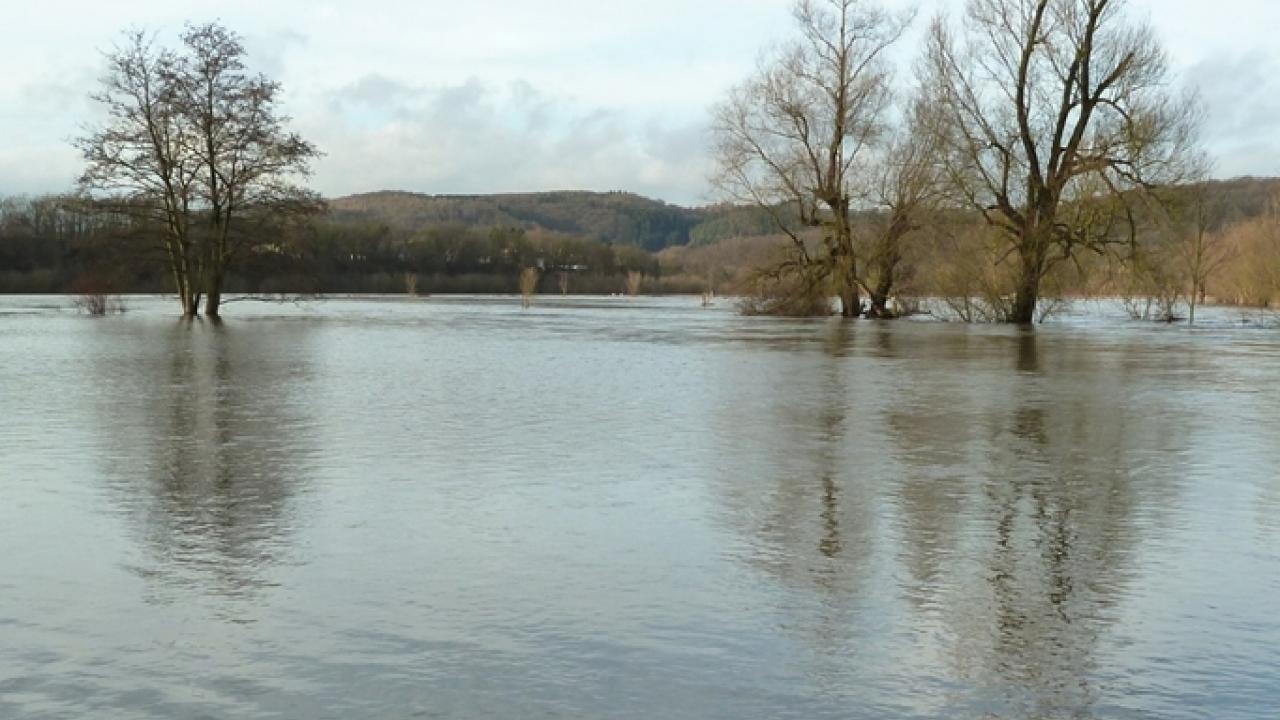 Hochwasser an der Sieg – 2011 bei Hennef