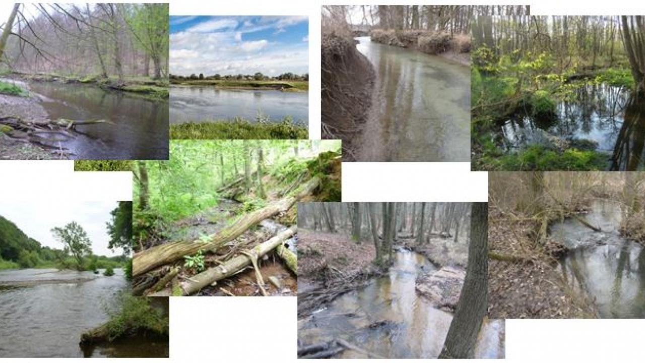 Gewässertypen in NRW