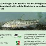 Fischfauna Lippe