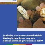 Leitfaden Salmonidenlaichgewässer.jpg