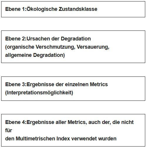 """Abbildung 3: Der """"Output"""" des Bewertungssystems ist in verschiedene Ebenen gegliedert. Die Ebenen 1 und 2 dienen zur Bewertung, die Ebenen 3 und 4 zur Interpretation"""